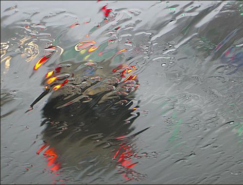 Cuidado con la llegada de las primeras lluvias