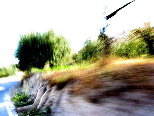 velocidad-riesgo.jpg