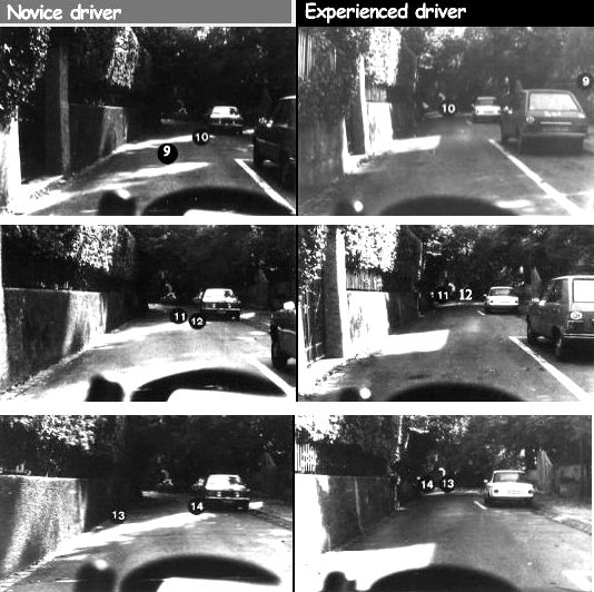 Fijación de mirada para conductores noveles y experimentados