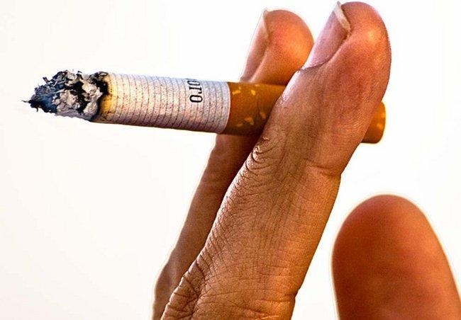 Tabaco por Norto