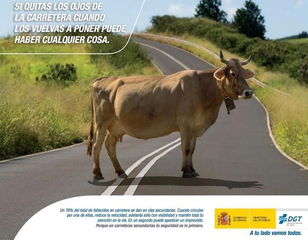 Campaña de tráfico