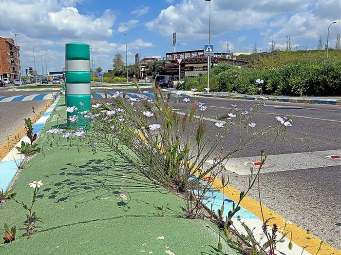Los peligros de los márgenes de la carretera (4): medianas y edificaciones