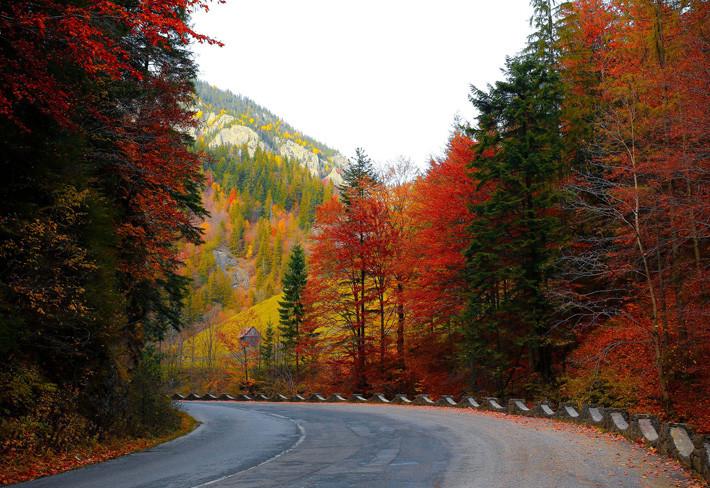 Todo lo que tienes que saber sobre el cambio de neumático en otoño