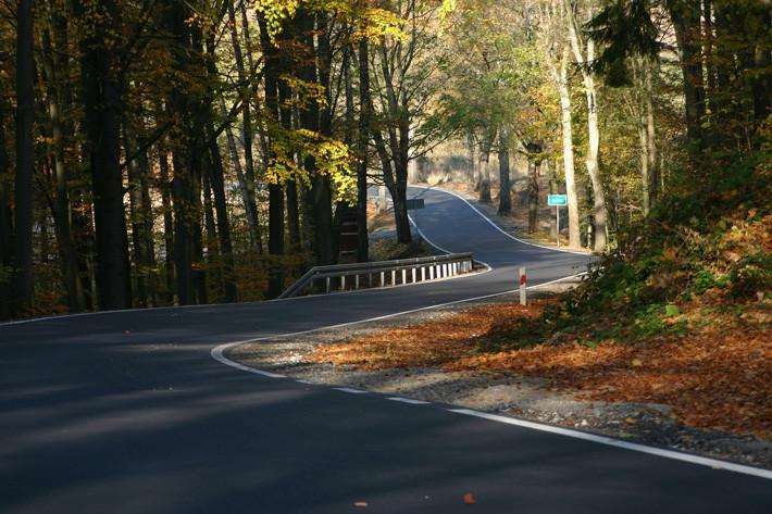 otoño carretera curvas