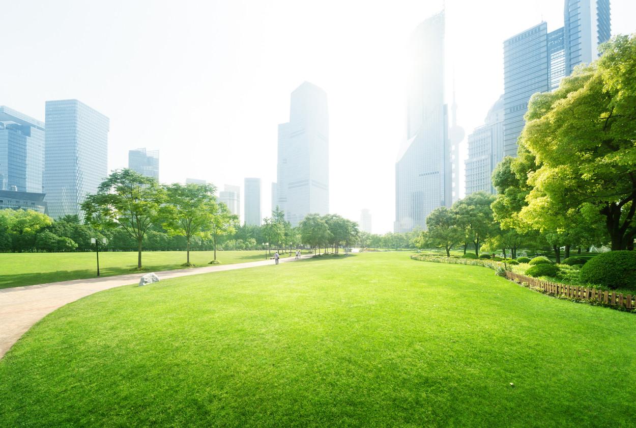 Día Mundial del Medioambiente: una ciudad sostenible también pasa por una movilidad segura