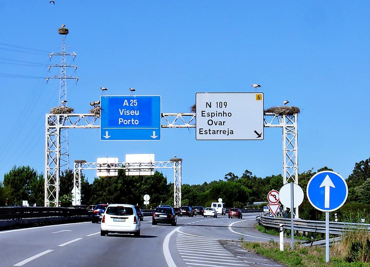Guía para moverte por las carreteras de Portugal
