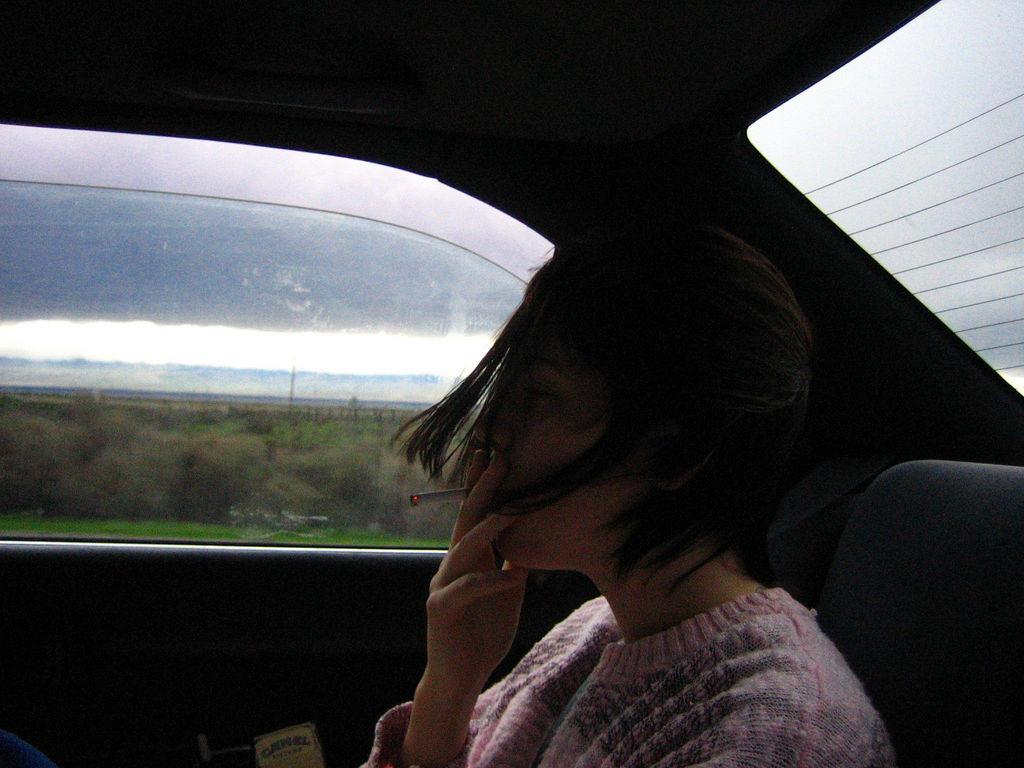 Día Mundial Sin Tabaco (también en el coche)