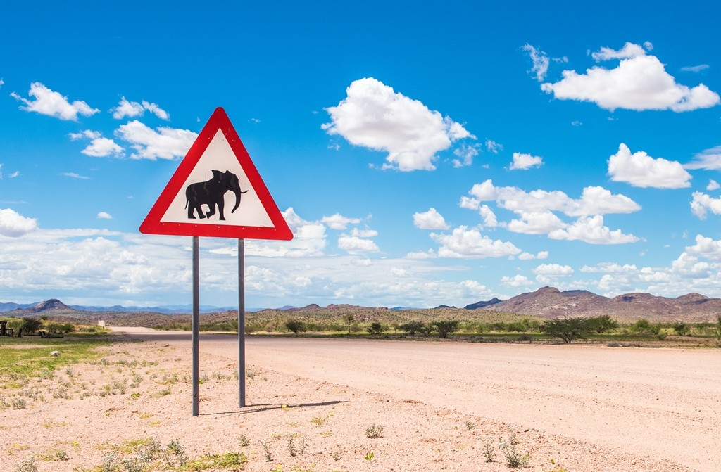 El problema de la seguridad vial en los países en desarrollo