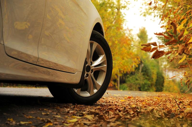 neumáticos otoño